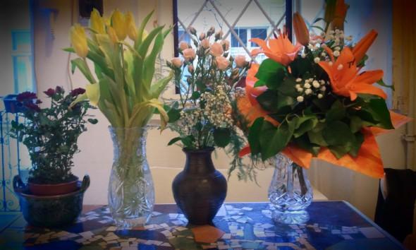 Évek, virágok