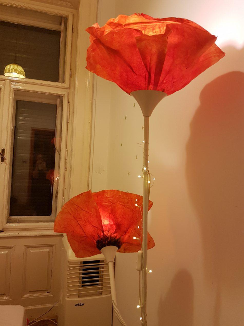 Papír pipacs ernyő