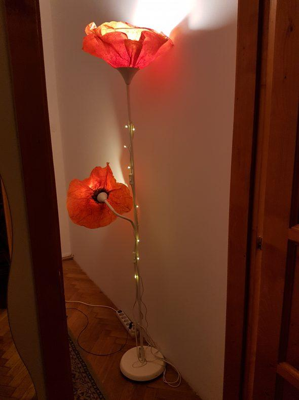 Pipacs lámpa