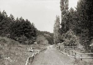 Állatkert, Veszprém